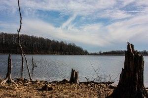 M Creek 19