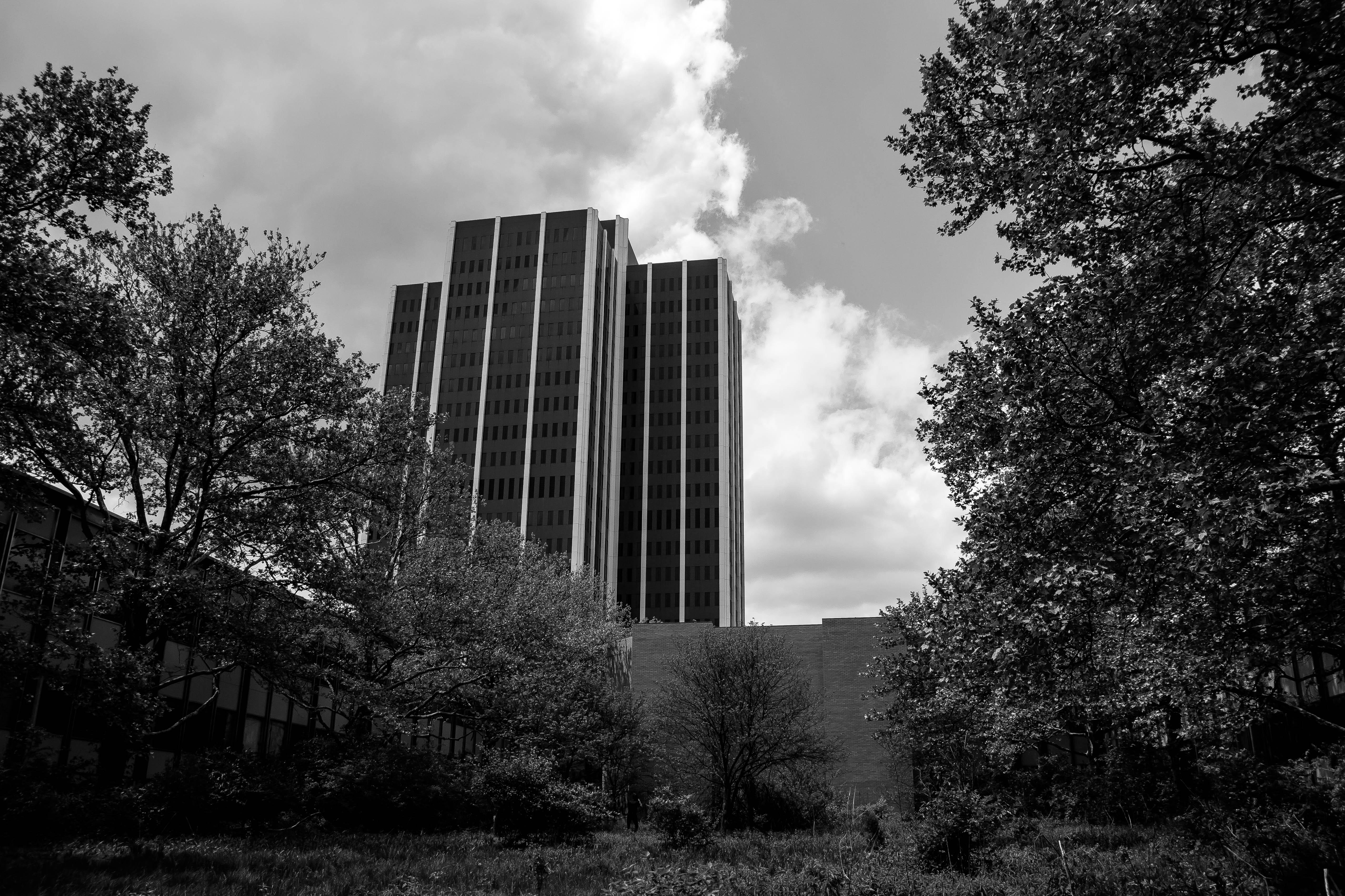 martin tower - photo #6