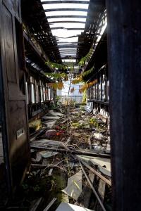 Abandoned Cart 9