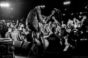 The Bouncing Souls 50