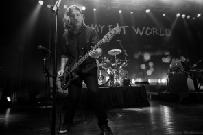 Jimmy Eat World 50
