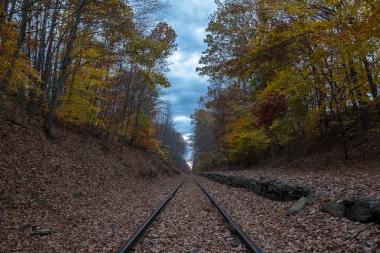 Tracks 12