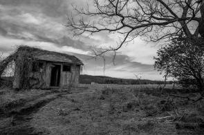 Abandoned House 47