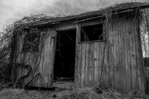 Abandoned House 49