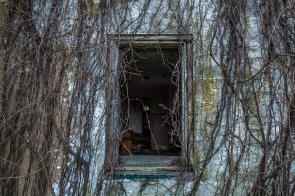 Abandoned House 52