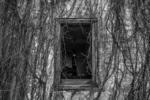 Abandoned House 53