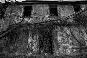 Abandoned House 60
