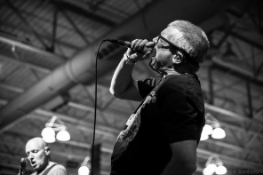 Descendents 24