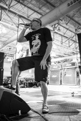 Descendents 5