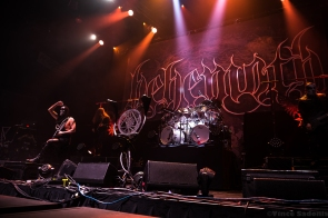 Behemoth 7