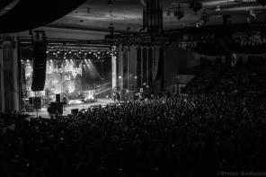 New Found Glory 128