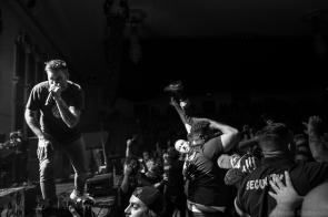 New Found Glory 50