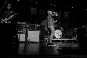 The Bronx 6