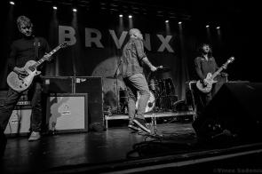 The Bronx 81