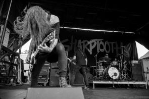 Sharptooth 92